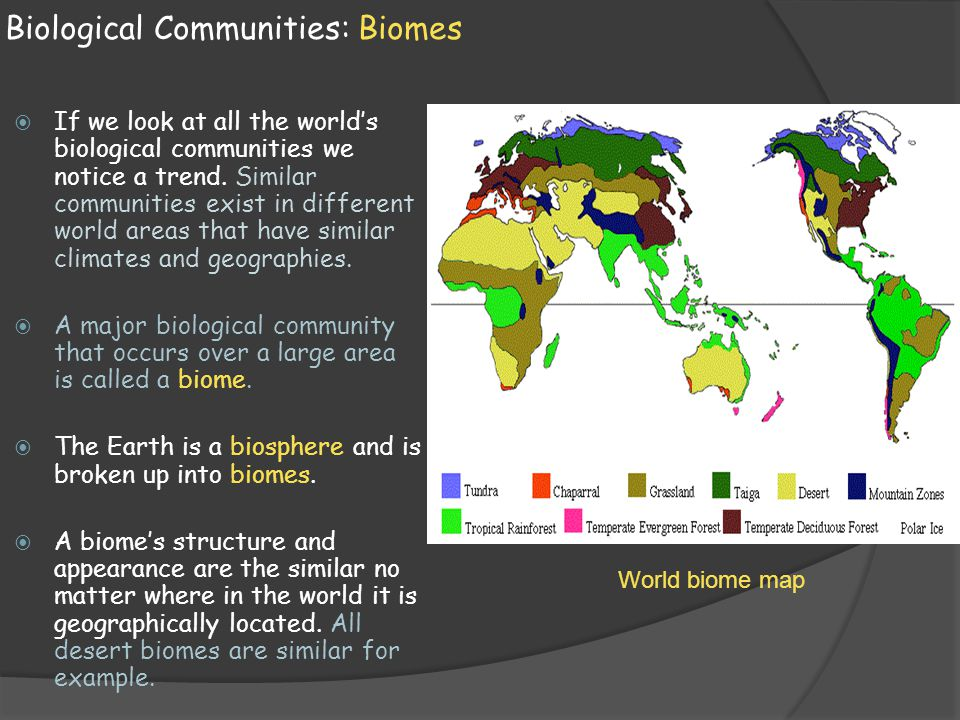 biomes are the communities of the world Deciduous forest biome: in the temperate zones such as europe, eastern asia, southern canada and eastern part of united states, the most characteristic biome is the deciduous forest tropical deciduous forests also occur in many tropical parts of the world.