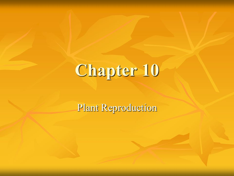 Chapter 10 Plant Reproduction