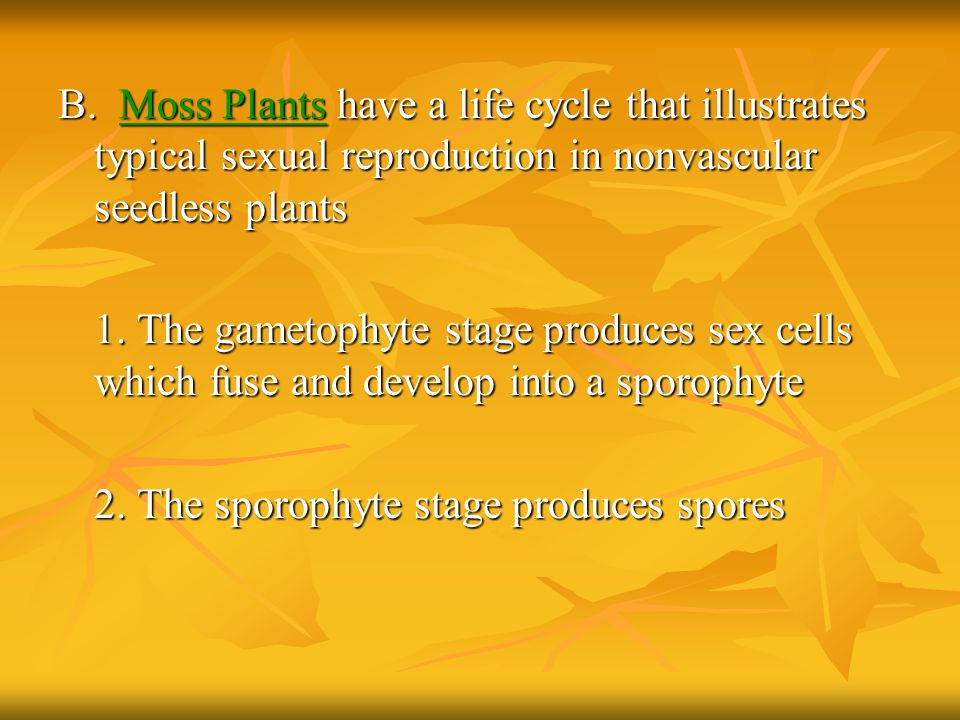 B. Moss Plants have a life cycle that illustrates typical sexual reproduction in nonvascular seedless plants
