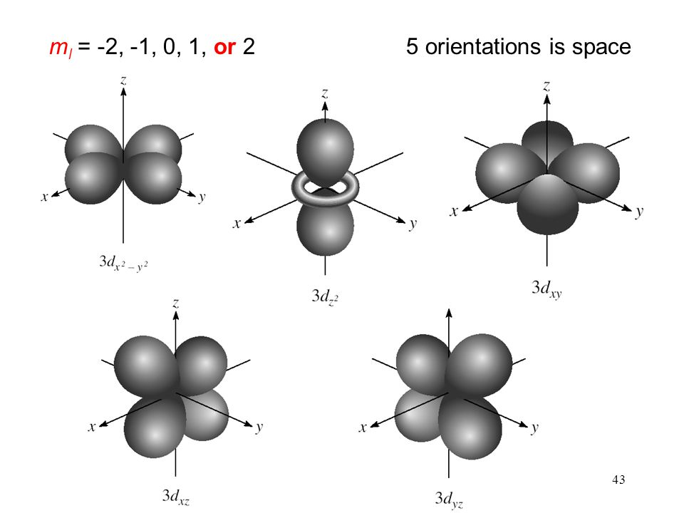 ml = -2, -1, 0, 1, or 2 5 orientations is space 43