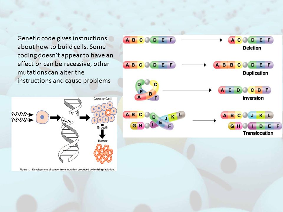 Genetic code gives instructions about how to build cells