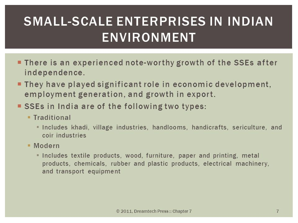 Small-Scale Enterprises - ppt video online download
