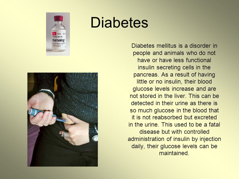 Diabetes Diabetes mellitus is a disorder in