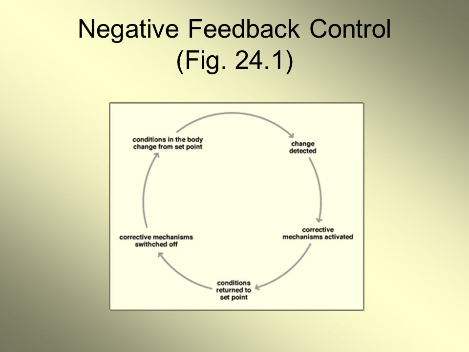 Negative Feedback Control (Fig. 24.1)