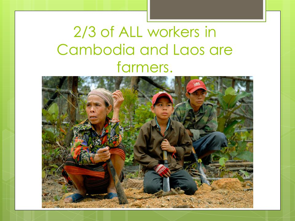 2/3 of ALL workers in Cambodia and Laos are farmers.