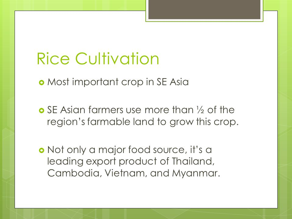 Rice Cultivation Most important crop in SE Asia