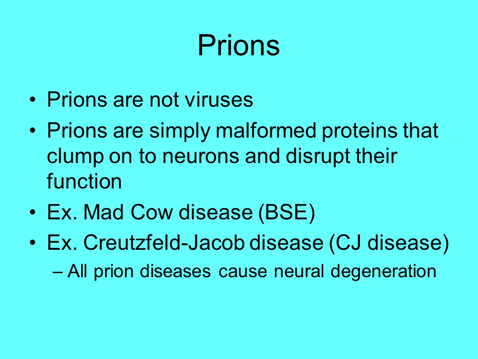 Prions Prions are not viruses