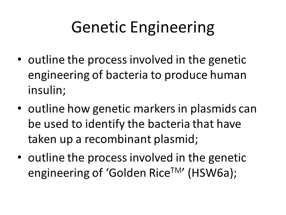 Genetic Engineering outline the process involved in the genetic engineering of bacteria to produce human insulin;