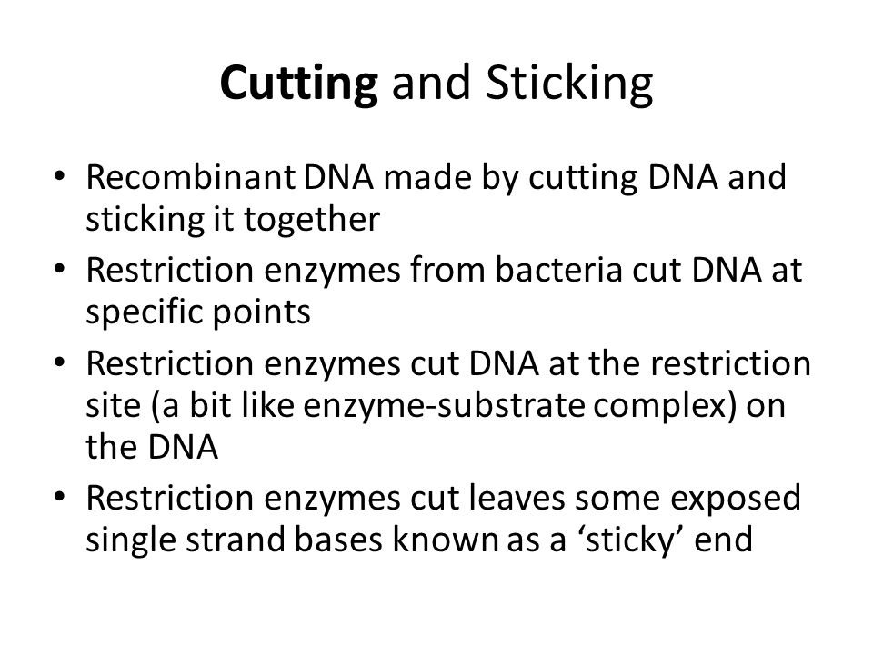 Cutting and Sticking Recombinant DNA made by cutting DNA and sticking it together. Restriction enzymes from bacteria cut DNA at specific points.