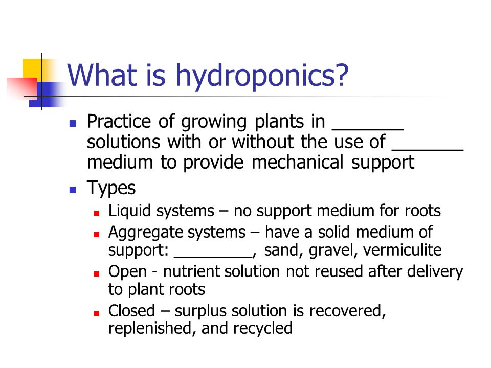 Hydroponics Objective: Introduce students to growing plants
