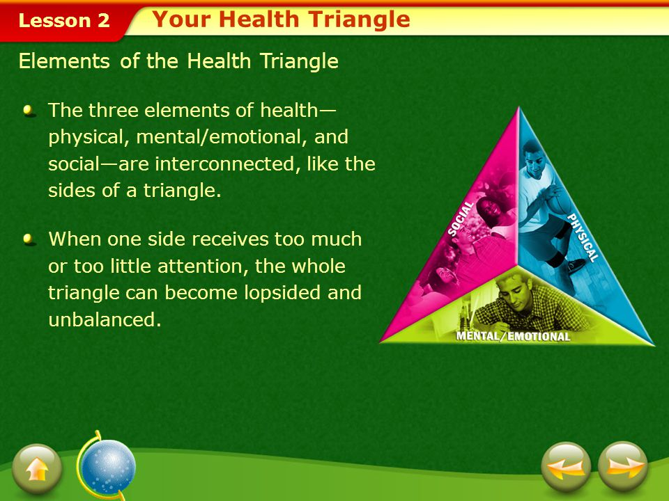 Your Health Triangle Elements of the Health Triangle