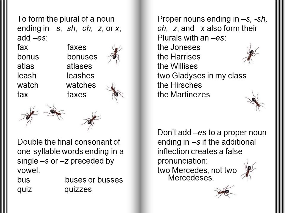 How To Make Noun Form