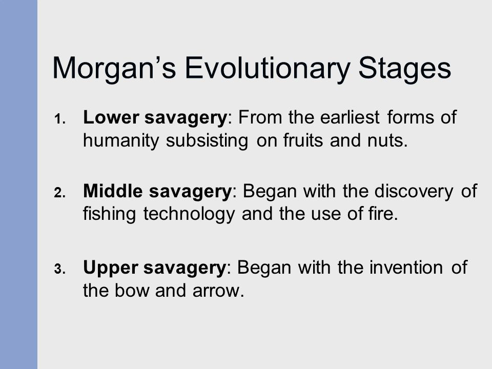 Morgan's Evolutionary Stages