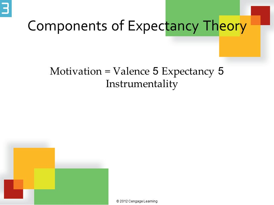 Components of Expectancy Theory