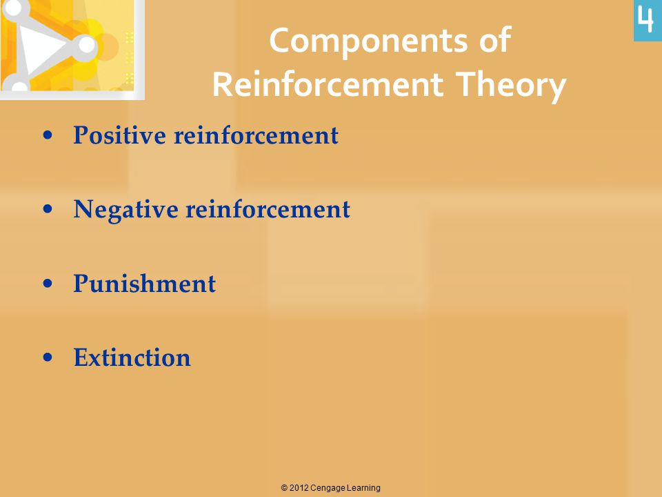 Components of Reinforcement Theory