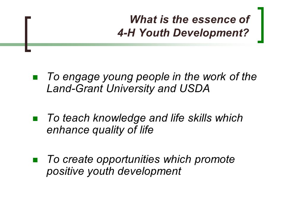 What is the essence of 4-H Youth Development