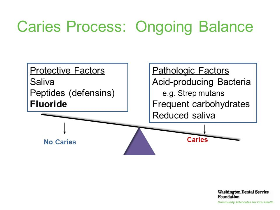 Caries Process: Ongoing Balance