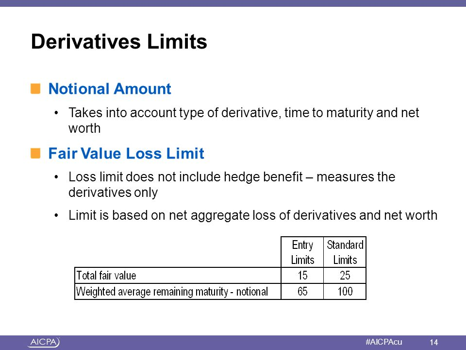 Derivatives Limits Notional Amount Fair Value Loss Limit