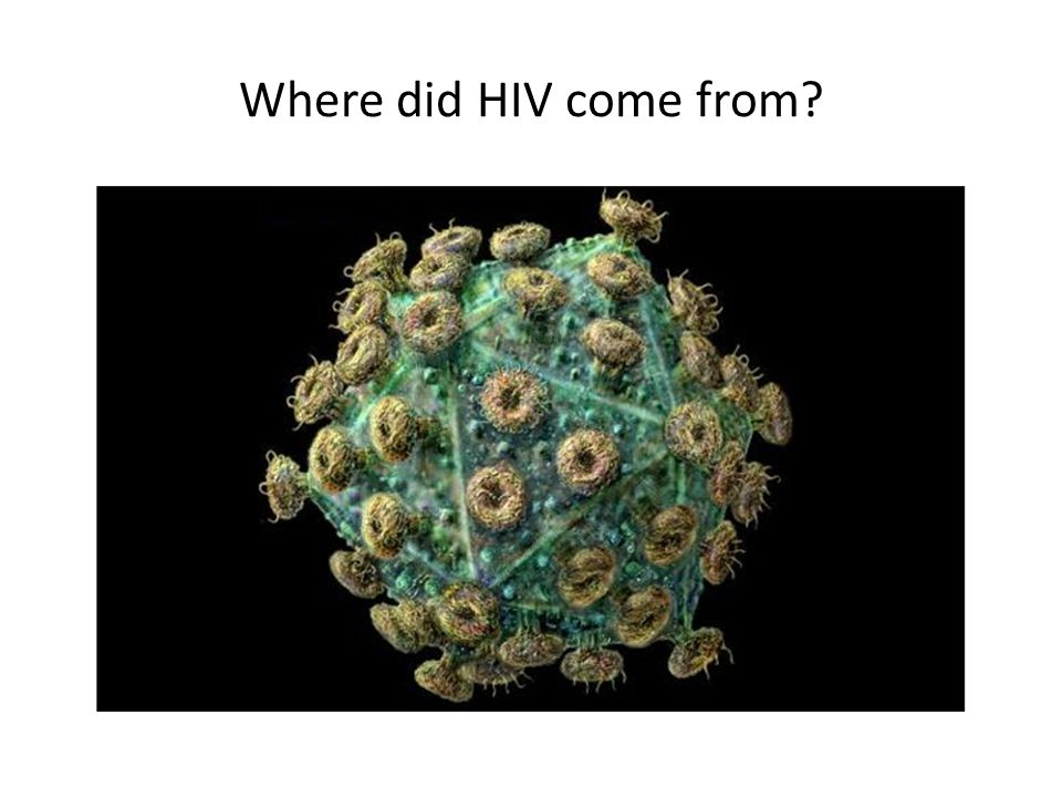 Where did HIV come from