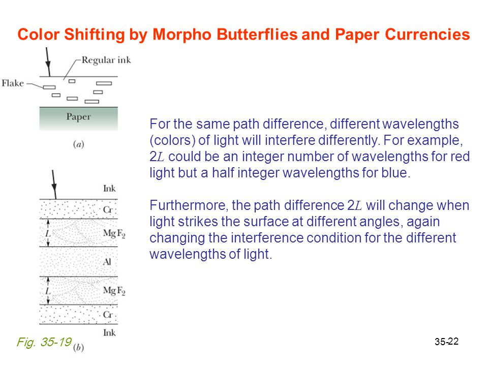 Color Shifting by Morpho Butterflies and Paper Currencies