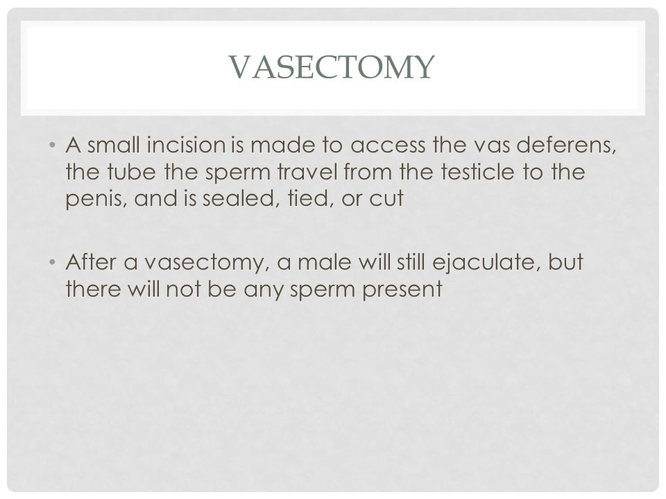 vasectomy A small incision is made to access the vas deferens, the tube the sperm travel from the testicle to the penis, and is sealed, tied, or cut.