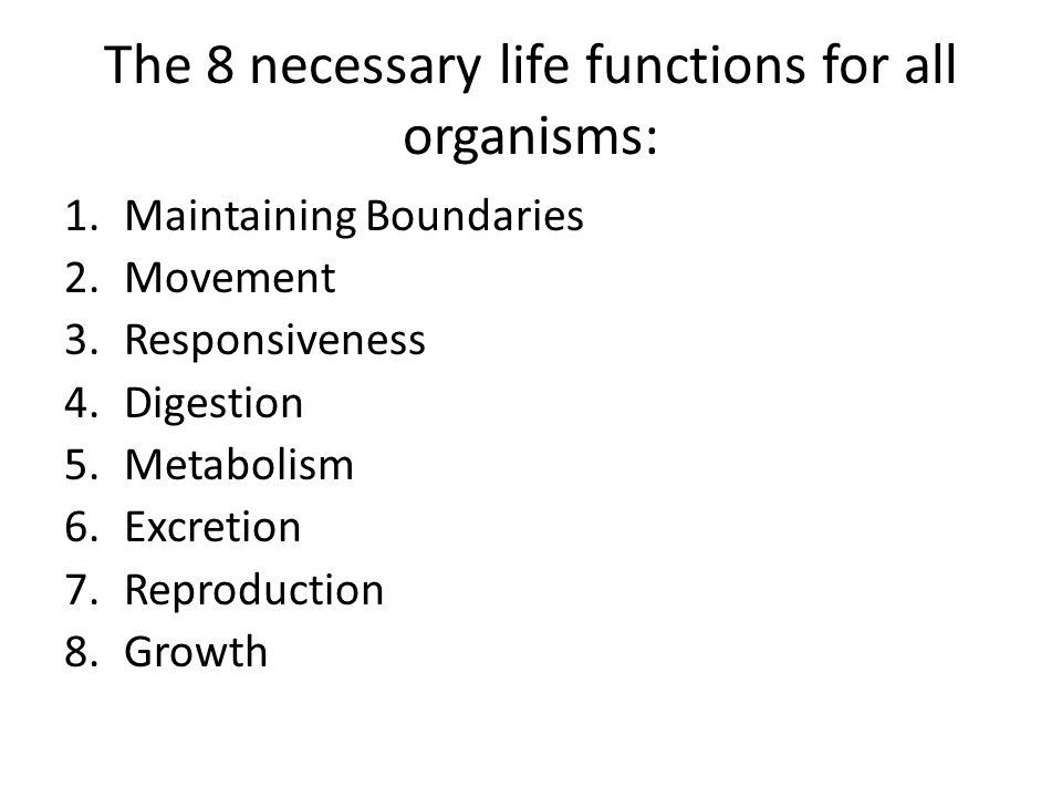 Necessities for Life and Body Regions - ppt video online download