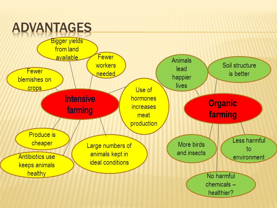 intensive vs organic farming