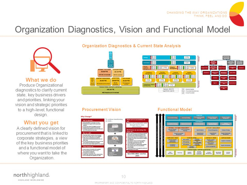 Organization Diagnostics, Vision and Functional Model