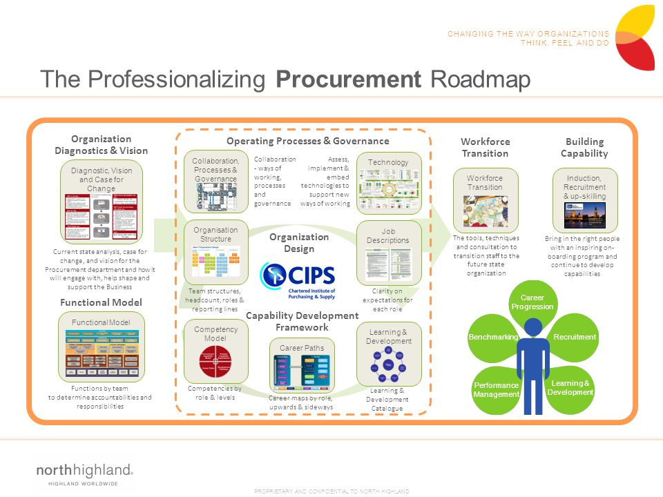 The Professionalizing Procurement Roadmap
