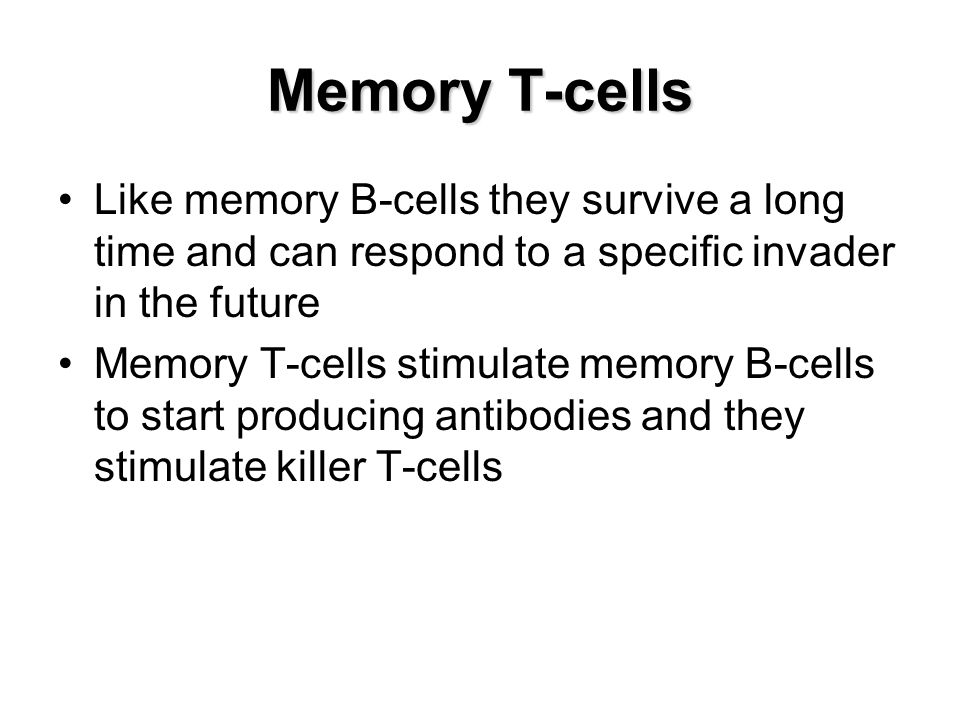 Memory T-cells Like memory B-cells they survive a long time and can respond to a specific invader in the future.