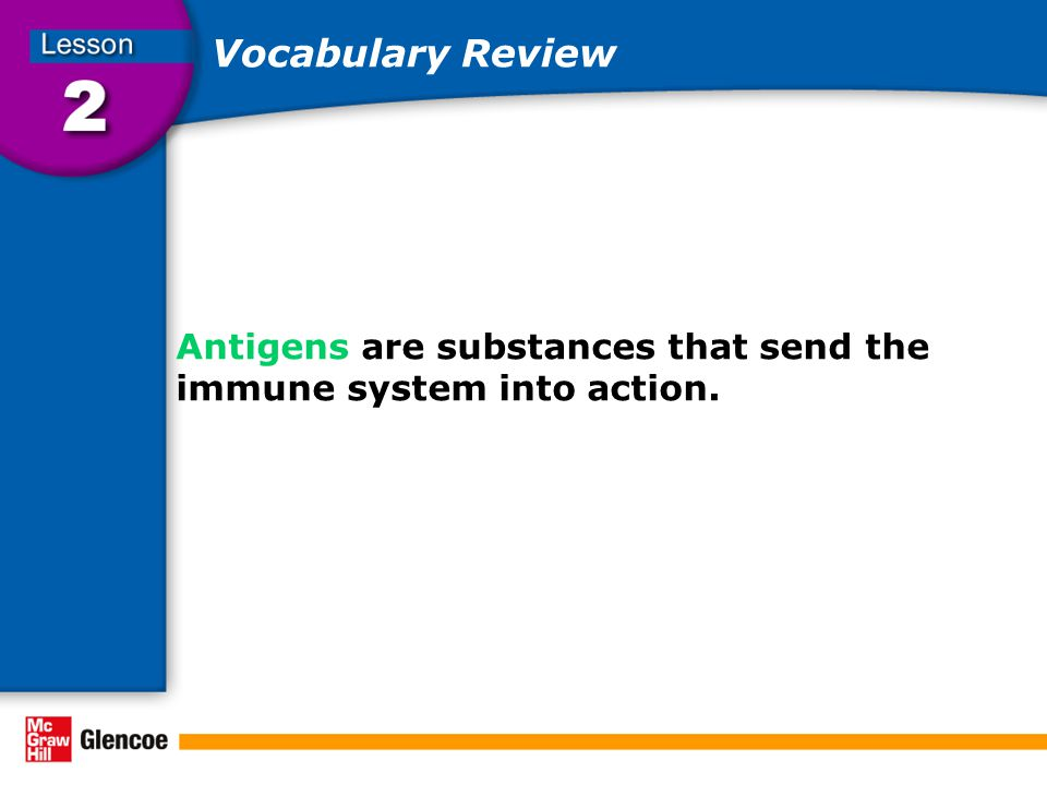 Vocabulary Review Antigens are substances that send the immune system into action.