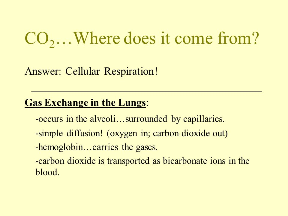 CO2…Where does it come from