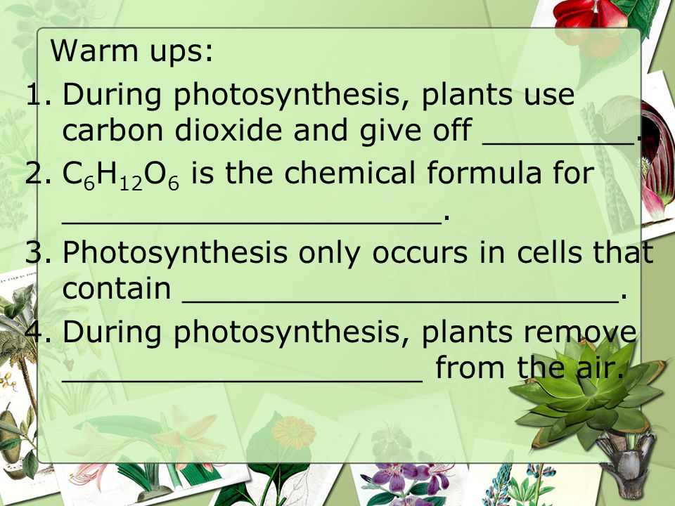 Warm ups: During photosynthesis, plants use carbon dioxide and give off ________. C6H12O6 is the chemical formula for ____________________.