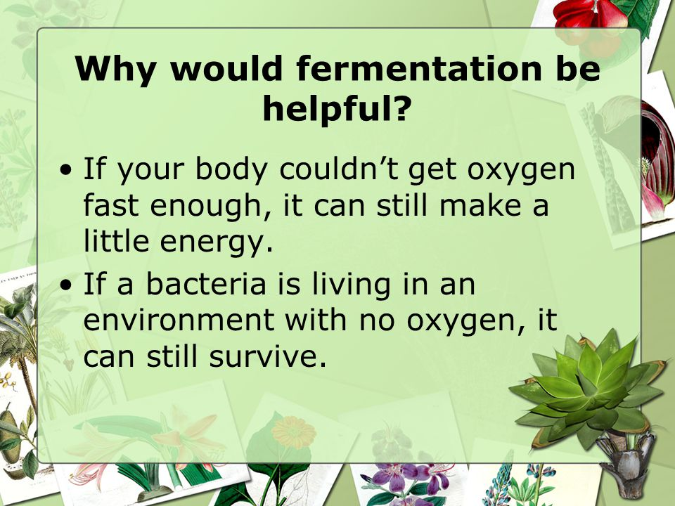 Why would fermentation be helpful