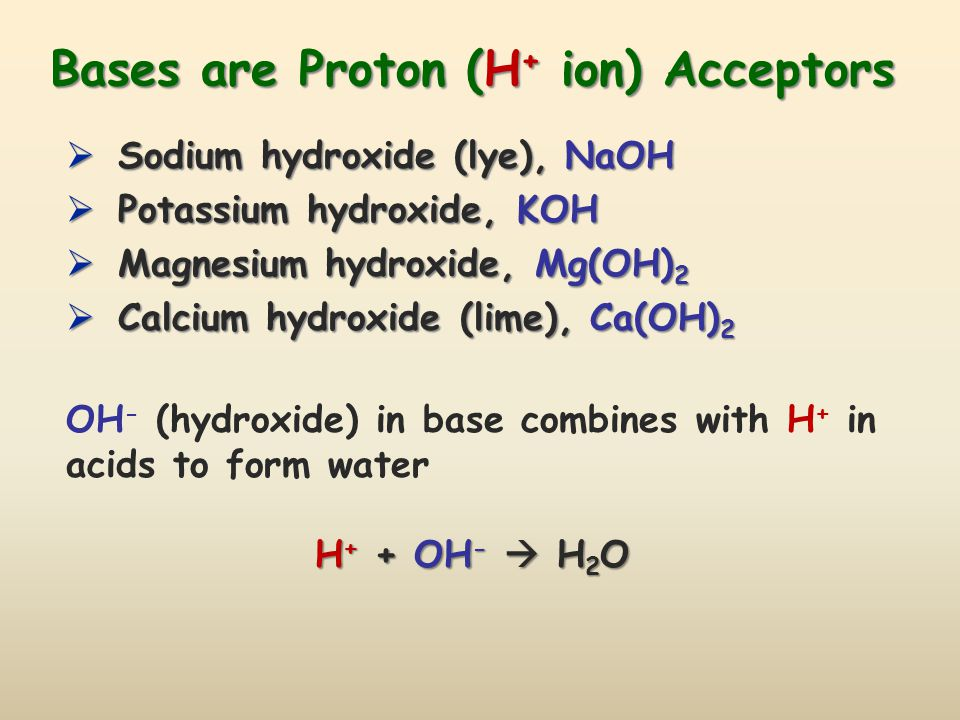 Bases are Proton (H+ ion) Acceptors