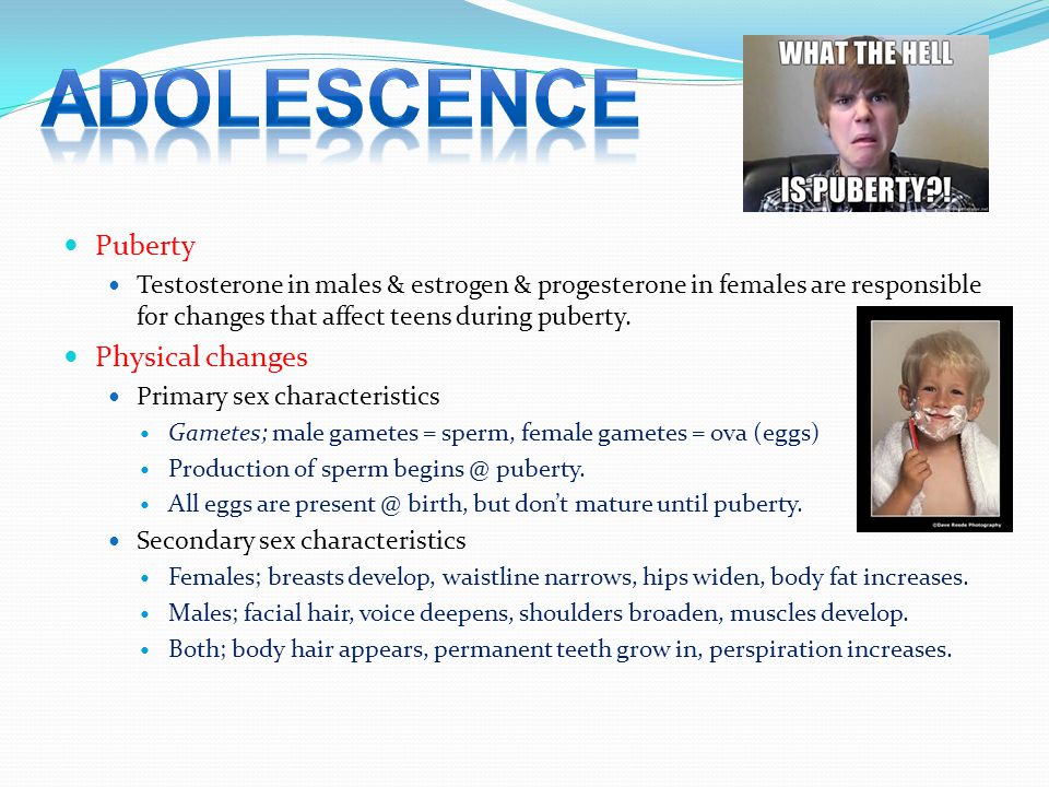 Adolescence Puberty Physical Changes Ppt Video Online