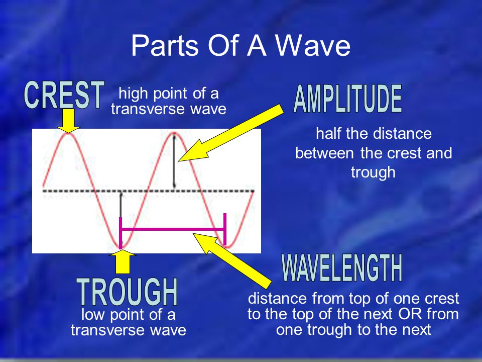 Parts Of A Wave CREST AMPLITUDE WAVELENGTH TROUGH