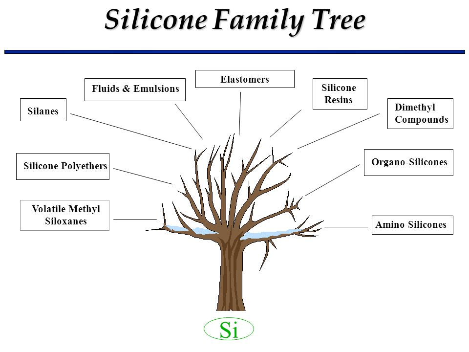Basic Silicone Chemistry (I) - ppt video online download