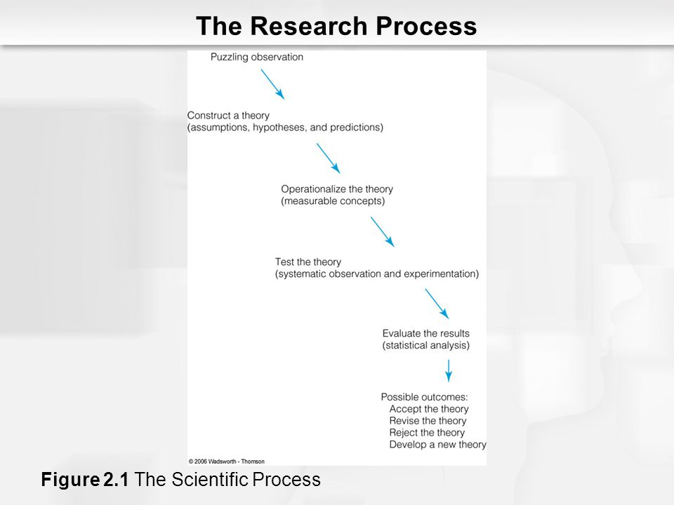 The Research Process Figure 2.1 The Scientific Process