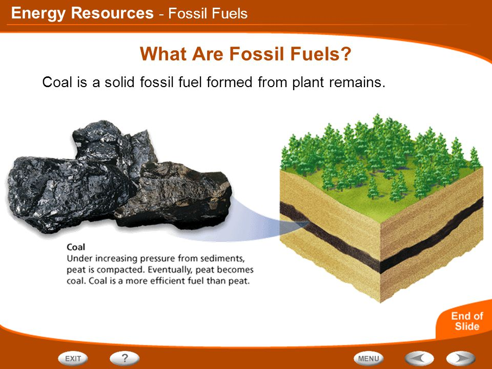 Table Of Contents Fossil Fuels Renewable Sources Of Energy