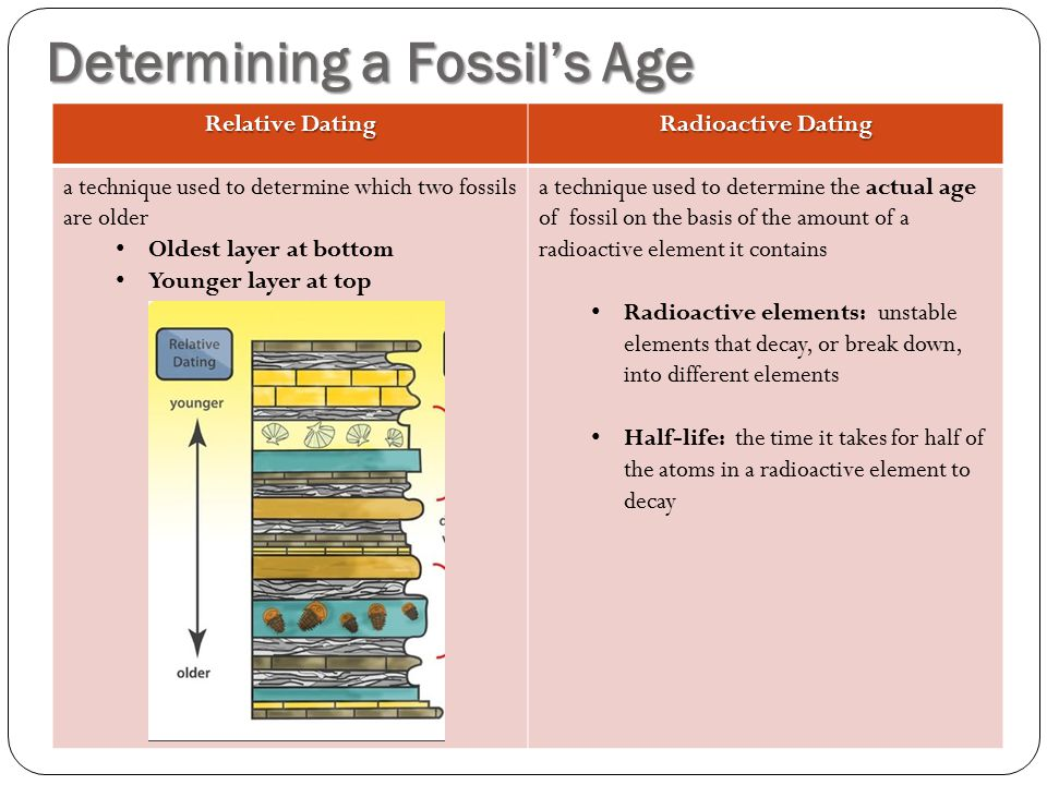 how does relative dating help determine the age of a fossil