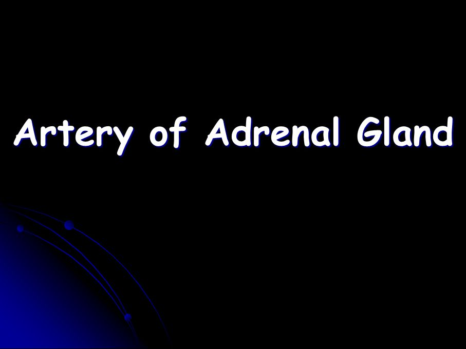 Artery of Adrenal Gland