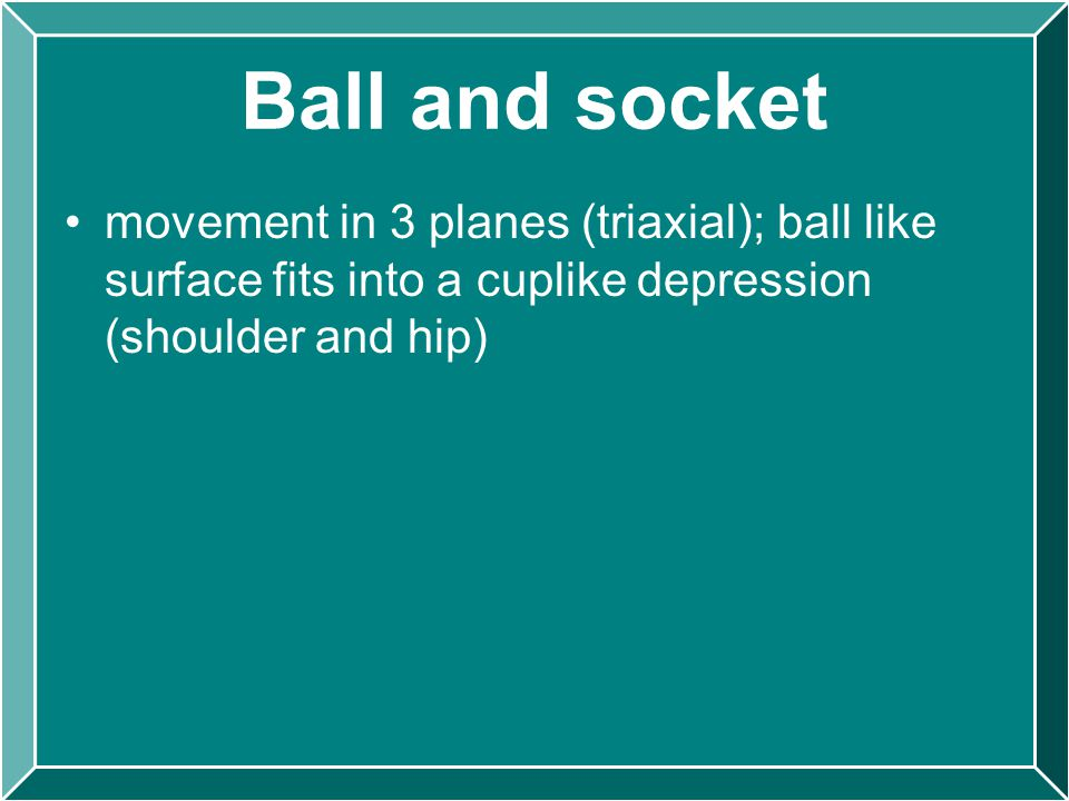 Ball and socket movement in 3 planes (triaxial); ball like surface fits into a cuplike depression (shoulder and hip)