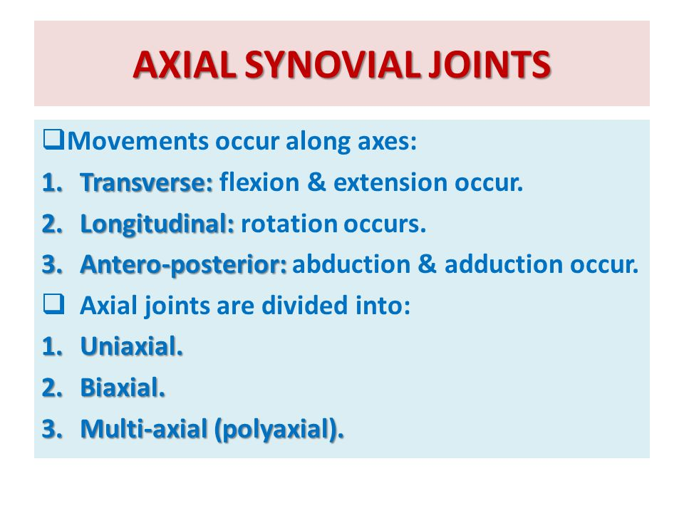 AXIAL SYNOVIAL JOINTS Movements occur along axes: