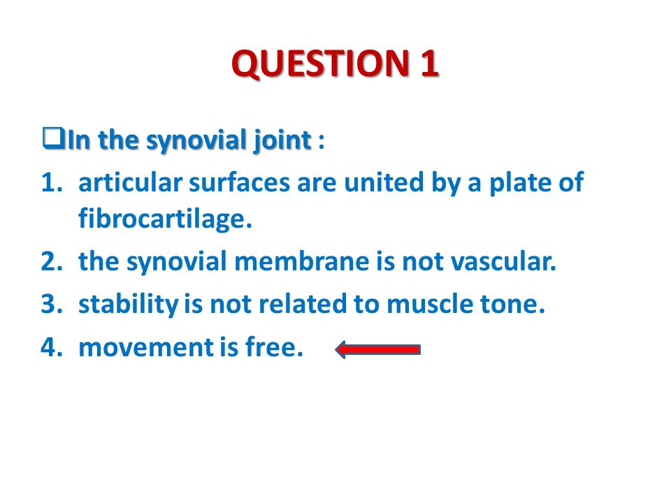 QUESTION 1 In the synovial joint :