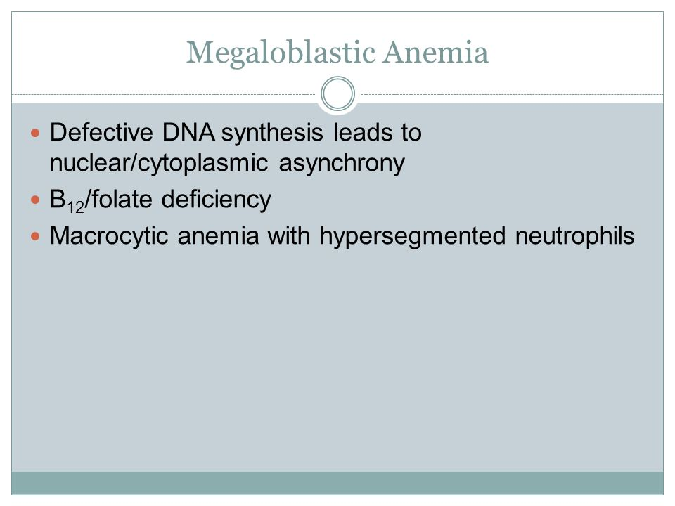 Megaloblastic Anemia Defective DNA synthesis leads to nuclear/cytoplasmic asynchrony. B12/folate deficiency.
