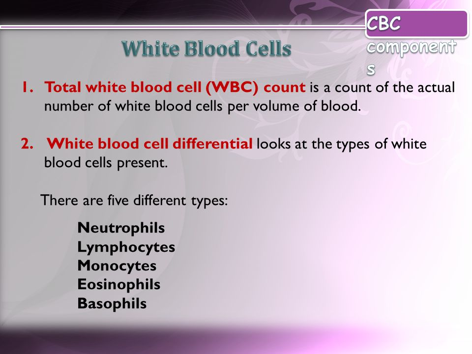 White Blood Cells CBC components