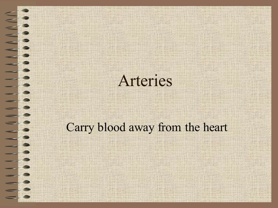 Carry blood away from the heart