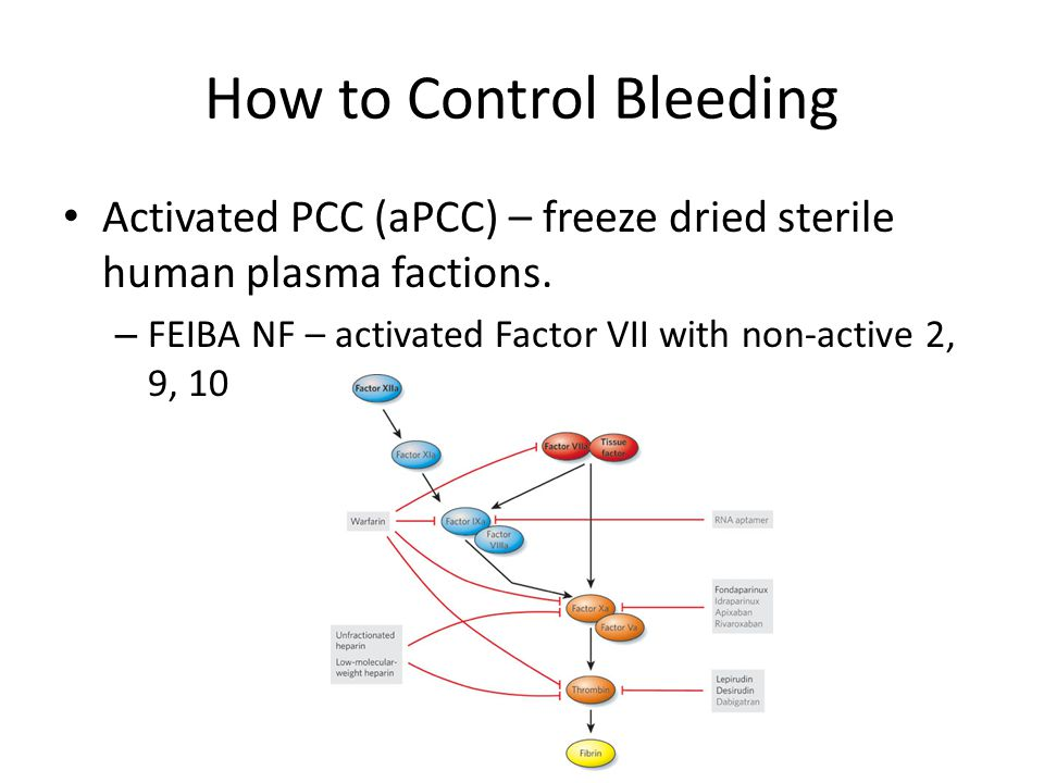 Atrial Fibrillation, Stroke, and Novel Anticoagulation - ppt