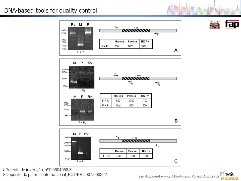 DNA-based tools for quality control